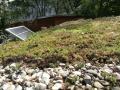 Extenzivní zelená střecha v Otevřené zahradě
